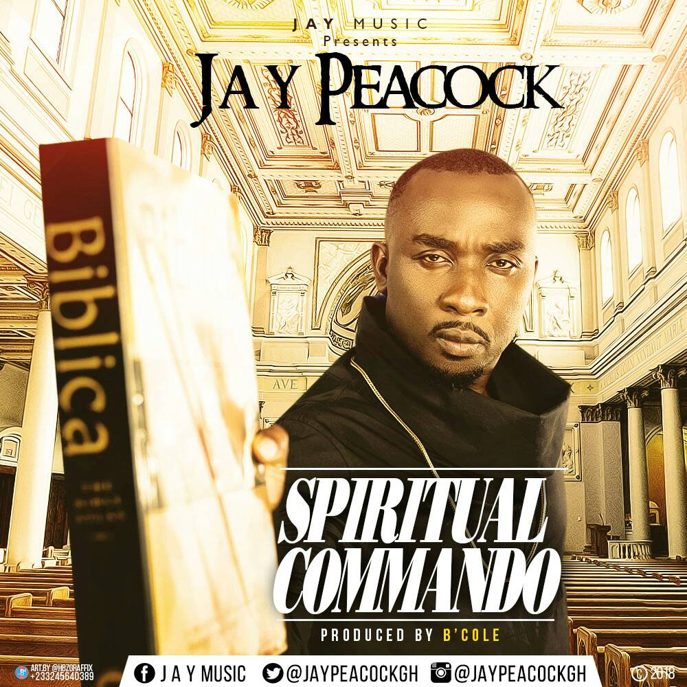 Jay Peacock - Spiritual Commando artwork